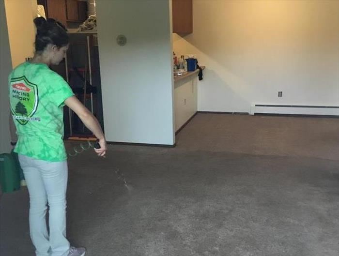 girl spraying chemical on carpet