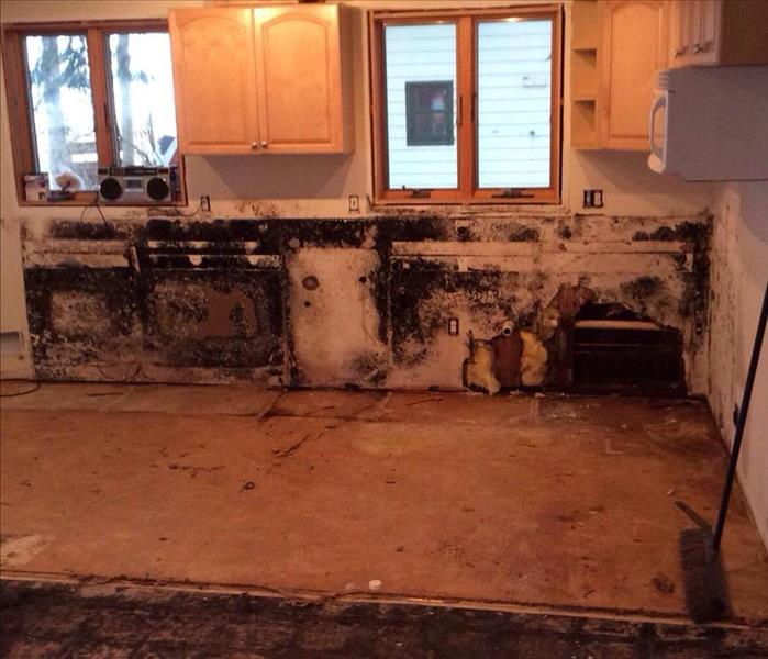 Water Leak Causes Extensive Mold Growth