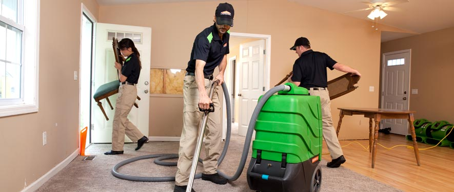 Alpena, MI cleaning services
